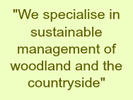 """We specialise in sustainable management of woodland and the countryside"""